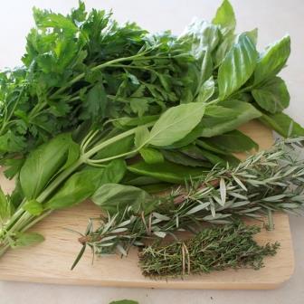 Пряновкусовые и лекарственные растения
