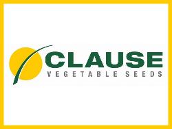 Clause (Клоз)