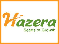 Hazera (Хазера)