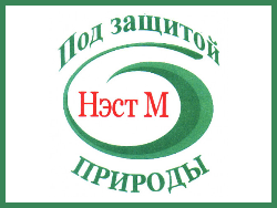 НЭСТ М