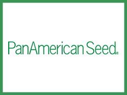 PanAmerican (Пан Американ)