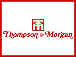 Thompson & Morgan (Томпсон и Морган)