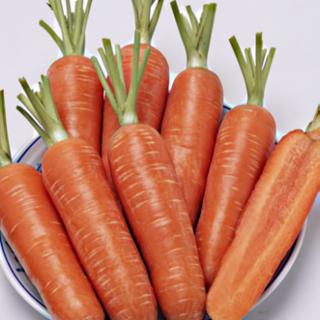 Морковь Проминанс F1 - Семена Тут