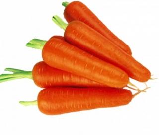 Морковь Абако F1 - Семена Тут