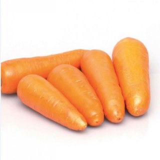 Морковь СВ 3118 ДЧ F1 - Семена Тут