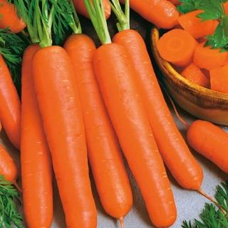 Морковь Ньюхолл F1 - Семена Тут