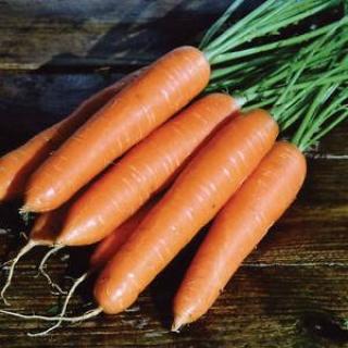 Морковь Ромоса - Семена Тут