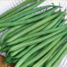 Фасоль овощная Малахит - Семена Тут