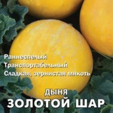 Дыня Золотой шар - Семена Тут