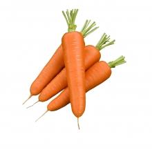 Морковь Диаменто (Вак-75) F1