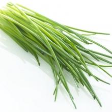Лук на зелень Гульден - Семена Тут