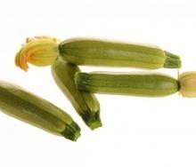 Барбарис Тунберга Пау Вау (С2) (лист зеленый с кремово-белыми пятнышками)