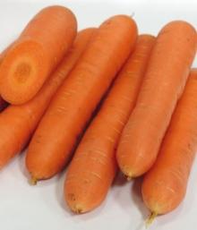 Морковь Нирвана - Семена Тут