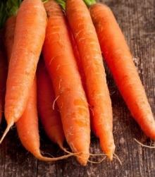 Морковь Фараон - Семена Тут