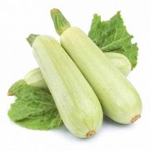 Гейхера гибридная Джинджер Эль (С2) (лист желто-зеленый с белыми прожилками, снизу розовый)