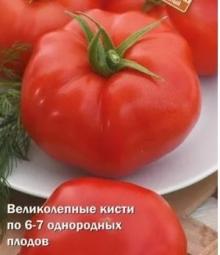 Томат Кассиопея F1 - Семена Тут