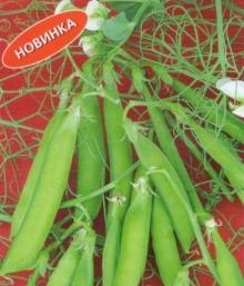 Горох овощной Триумф - Семена Тут