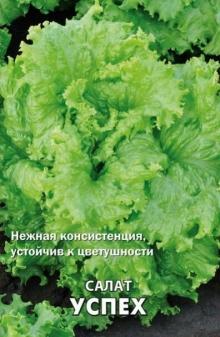 Салат Успех - Семена Тут