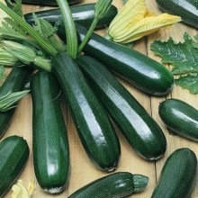Гейхера гибридная Лайм Раффлз (С2) (лист салатово-зелёный гофрированный)