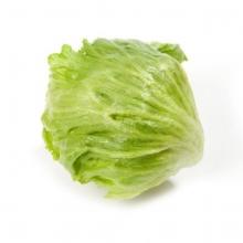 Актинидия аргута Вейки (С2) (мужской (опылитель), декор листья)